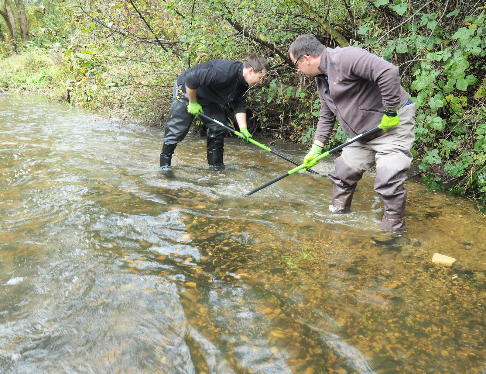 Czyszczenie tarliska pstrąga potokowego