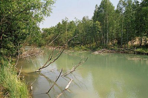 Kanał Szczakowski